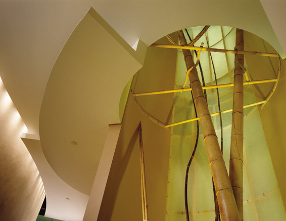 Earth Quadrant View of Ceiling Planes and Opening with Bamboo Sculpture to Floor Above